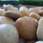 High Polished Yellow Pebbles