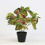 Red Heart Leaf Artificial Plant