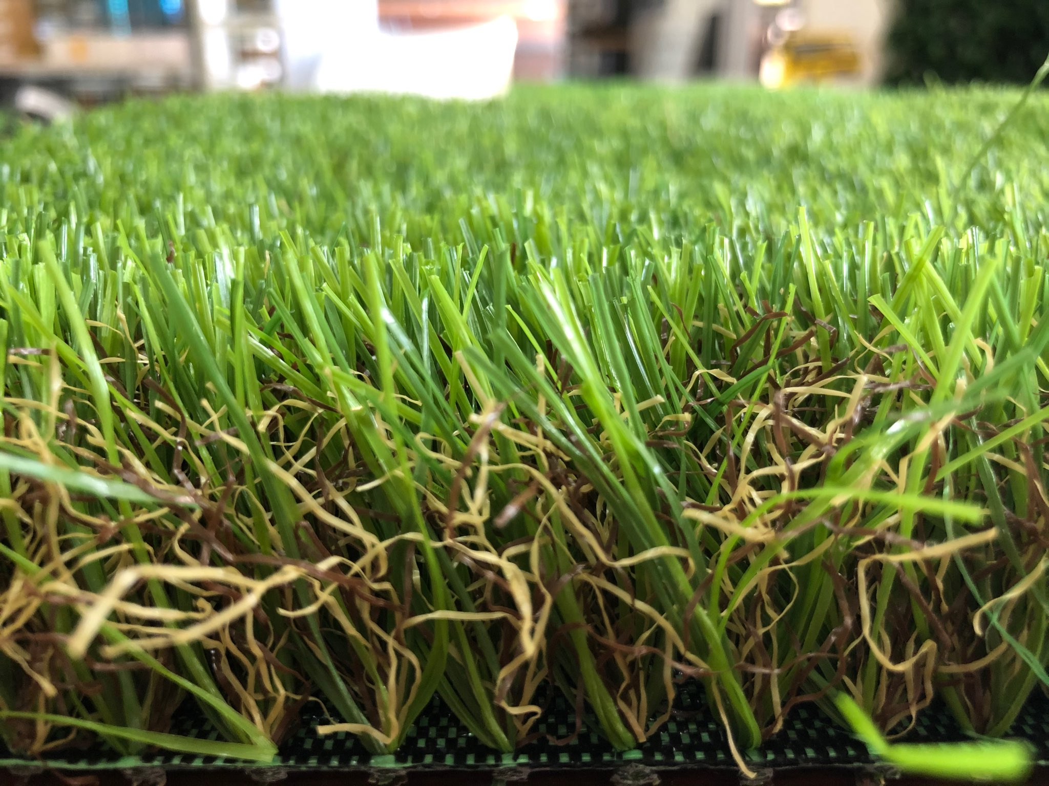 Backyard Lush 40mm