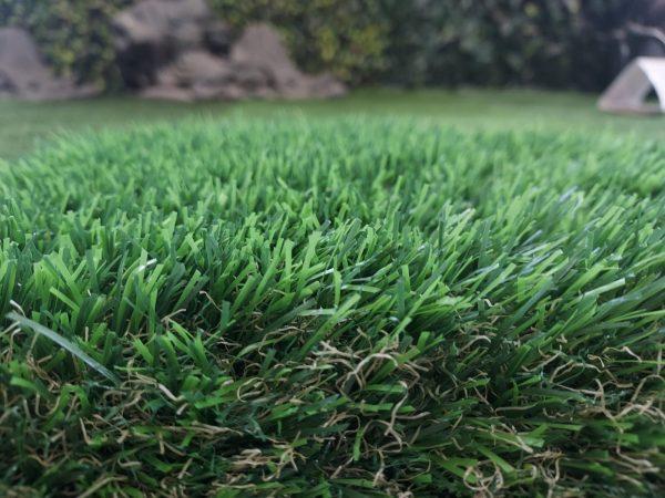 E-Grass